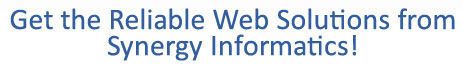 Website development service, synergy informatics